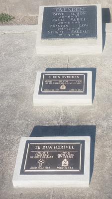 Picture of Taruheru cemetery, block 7, plot 128.