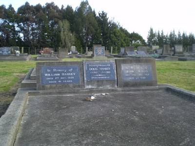 Picture of Taruheru cemetery, block 7, plot 133.