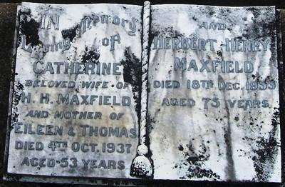 Picture of Taruheru cemetery, block 7, plot 136.