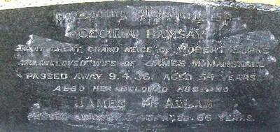 Picture of Taruheru cemetery, block 7, plot 55.