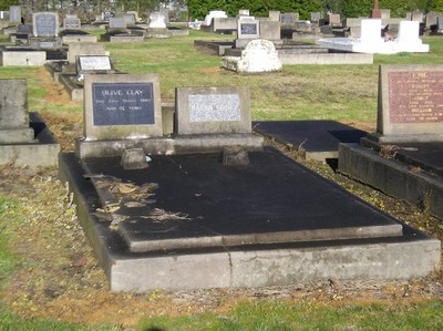Picture of Taruheru cemetery, block 8, plot 37.