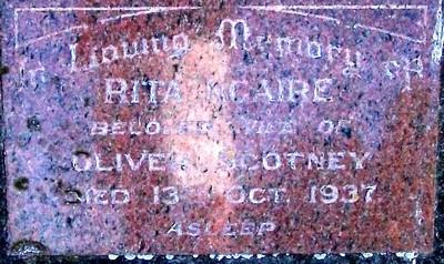 Picture of Taruheru cemetery, block 8, plot 65.