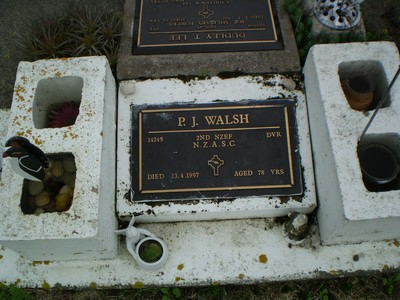 Picture of Taruheru cemetery, block RSA34, plot 442.