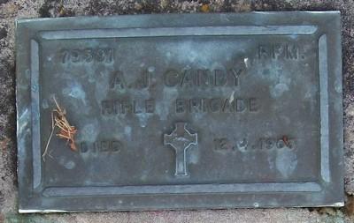 Picture of Taruheru cemetery, block RSA, plot 161.