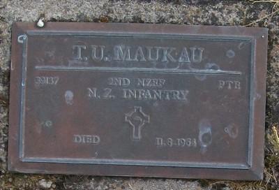 Picture of Taruheru cemetery, block RSA, plot 170.