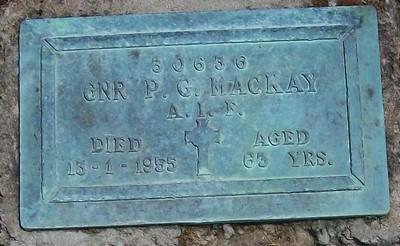 Picture of Taruheru cemetery, block RSA, plot 207.