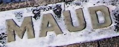 Picture of Taruheru cemetery, block SEC1, plot 229.