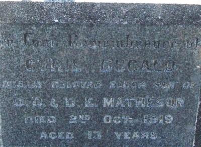 Picture of Taruheru cemetery, block SEC1, plot 496.