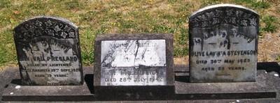 Picture of Taruheru cemetery, block SEC2, plot 556.