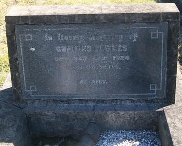 Picture of Taruheru cemetery, block SEC2, plot 800.