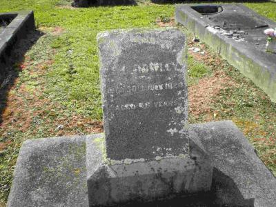 Picture of Taruheru cemetery, block SEC2, plot 810A.