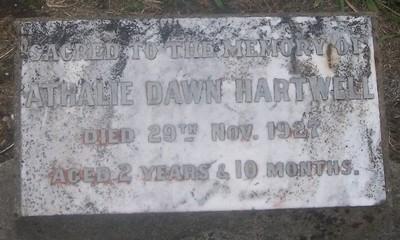 Picture of Taruheru cemetery, block SEC3, plot 1211.