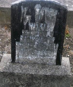 Picture of Taruheru cemetery, block SEC3, plot 1236.