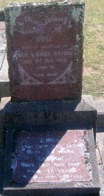 Picture of Taruheru cemetery, block SEC3, plot 1315.