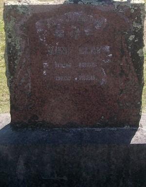 Picture of Taruheru cemetery, block SEC3, plot 1374.