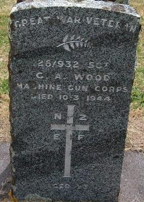 Picture of Taruheru cemetery, block S, plot 161.