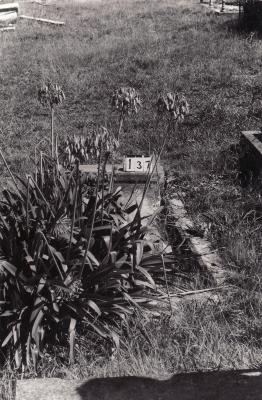 Historic picture of Makaraka cemetery, block MKB, plot 137.