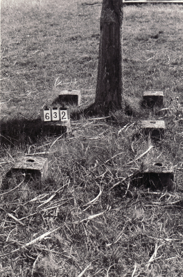 Historic picture of Makaraka cemetery, block MKB, plot 632.