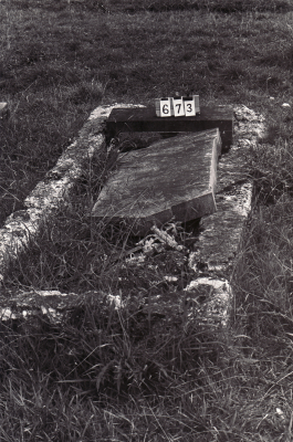 Historic picture of Makaraka cemetery, block MKB, plot 673.