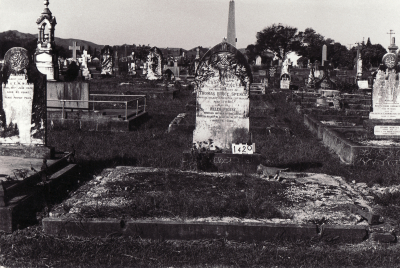 Historic picture of Makaraka cemetery, block MKC, plot 1420.