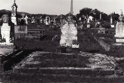 Historic picture of Makaraka cemetery, block MKC, plot 1420.