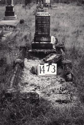 Historic picture of Makaraka cemetery, block MKE, plot 1473.