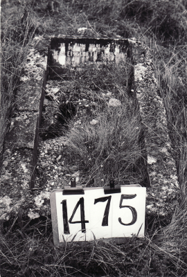 Historic picture of Makaraka cemetery, block MKE, plot 1475.