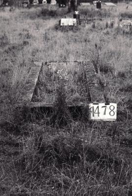 Historic picture of Makaraka cemetery, block MKE, plot 1478.