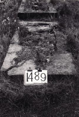 Historic picture of Makaraka cemetery, block MKE, plot 1489.