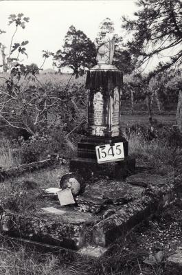 Historic picture of Makaraka cemetery, block MKE, plot 1545.