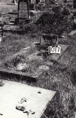 Historic picture of Makaraka cemetery, block MKF, plot 1017.