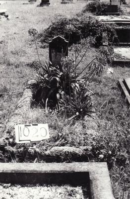 Historic picture of Makaraka cemetery, block MKF, plot 1020.