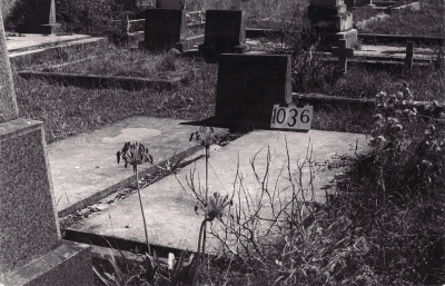 Historic picture of Makaraka cemetery, block MKF, plot 1036.