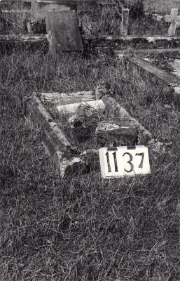 Historic picture of Makaraka cemetery, block MKF, plot 1137.