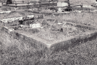 Historic picture of Makaraka cemetery, block MKF, plot 1289.