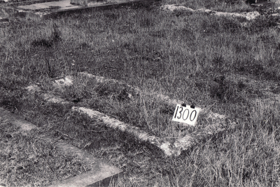 Historic picture of Makaraka cemetery, block MKF, plot 1300.