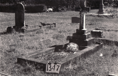 Historic picture of Makaraka cemetery, block MKF, plot 1347.