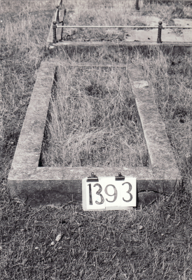 Historic picture of Makaraka cemetery, block MKF, plot 1393.