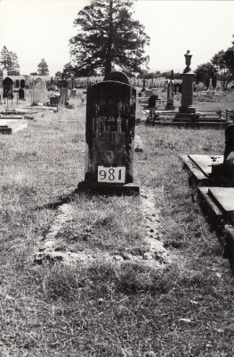 Historic picture of Makaraka cemetery, block MKF, plot 981.
