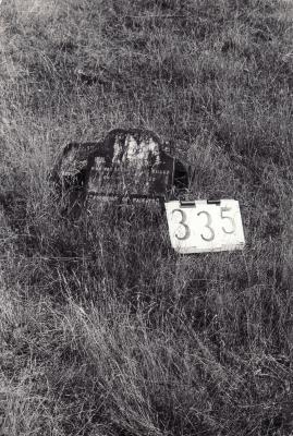 Historic picture of Makaraka cemetery, block MKG, plot 336.