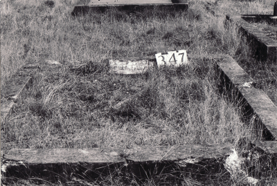Historic picture of Makaraka cemetery, block MKG, plot 347.