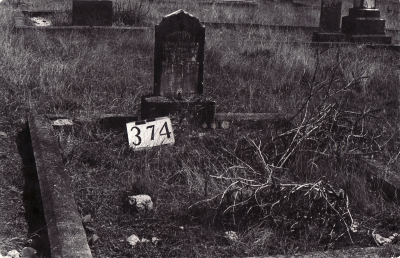 Historic picture of Makaraka cemetery, block MKG, plot 374.