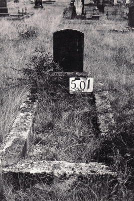 Historic picture of Makaraka cemetery, block MKG, plot 501.