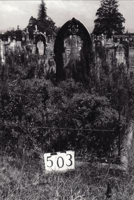 Historic picture of Makaraka cemetery, block MKG, plot 503.
