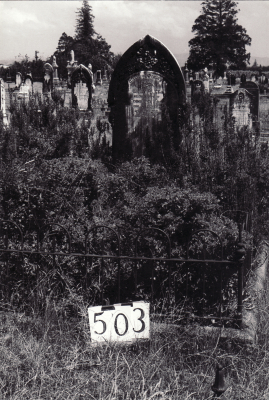 Historic picture of Makaraka cemetery, block MKG, plot 503.