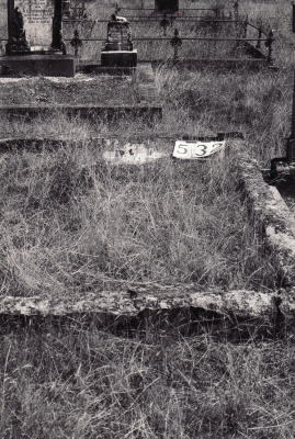 Historic picture of Makaraka cemetery, block MKG, plot 532.