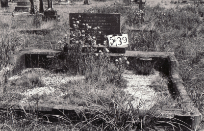 Historic picture of Makaraka cemetery, block MKG, plot 539.