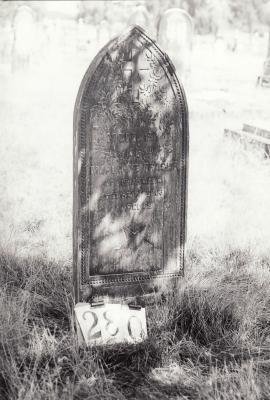 Historic picture of Makaraka cemetery, block MKH, plot 280.