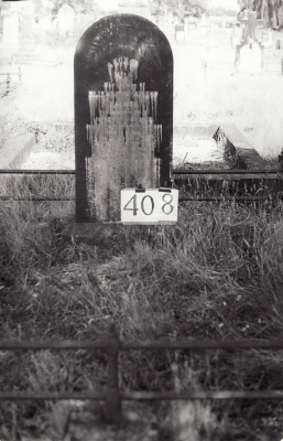 Historic picture of Makaraka cemetery, block MKH, plot 408.