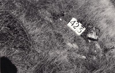 Historic picture of Makaraka cemetery, block MKH, plot 425.